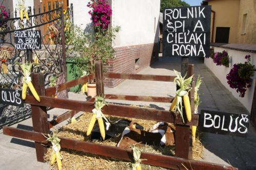 Galeria Dożynki Powiatowo-Gminne w Księzym Polu